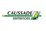 Семена гибридов кукурузы Caussade