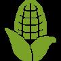 icons8-кукуруза-100